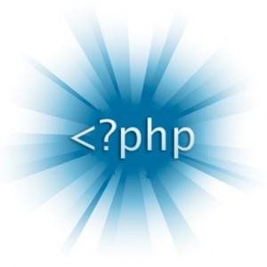 How To Select Your PHP Programmer?