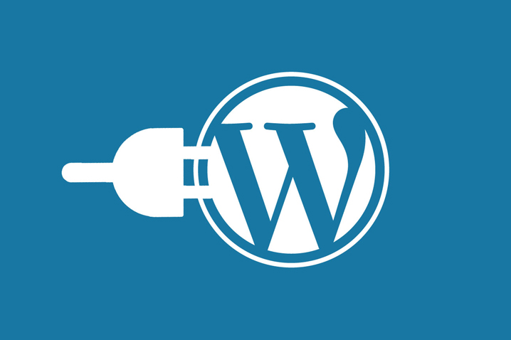Top 10 Must Have Plugins For WordPress
