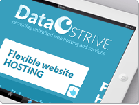 data strive